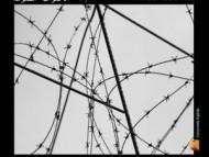 Ahmed ESSYAD - Voix interdites